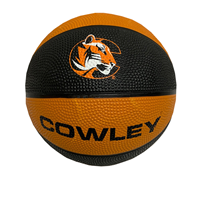Ball Basketball Mini Cowley C