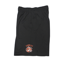 Nike Shorts Fly2.0 Cowley C